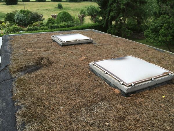 old felt roof in woolley before